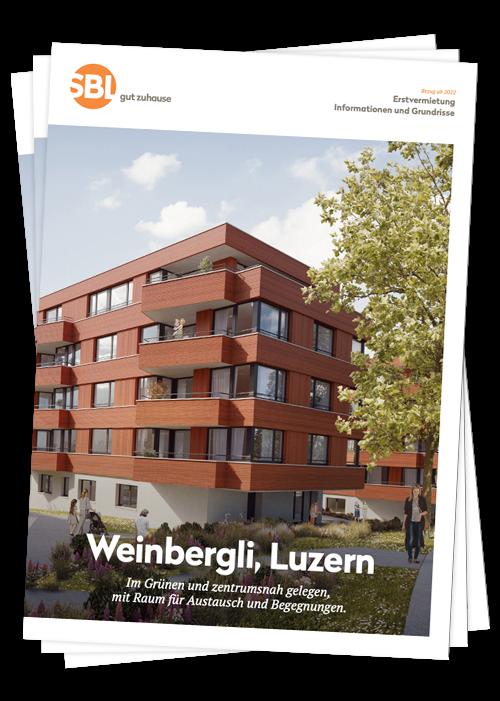 Vorschaubild-Web-Weinbergli-gross.png